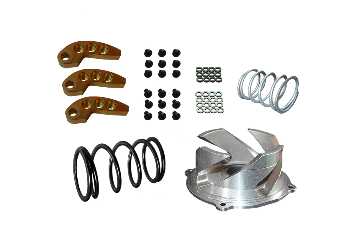 2021-22 Polaris RMK/SKS/Assault 850 Clutch kit with adjustable weights 0-3000ft with Stock Pipe